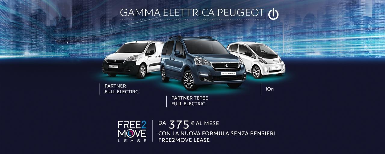 hub_gamma elettrica_noPA